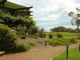 Vasse Felix winery in Margaret River. Very pretty. , Leah - April 2011