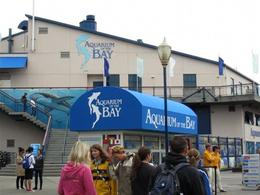 Outside of the Aquarium, ROD C - November 2011