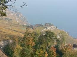 View of vineyards and Swiss Riviera., Lina B - November 2007
