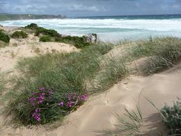 Woolamai Beach, Phillip Island, Tera K - November 2010