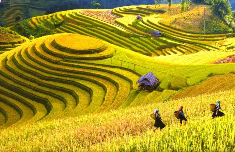 Sapa Trekking Tours - 2 Days 1 Night Stay At Homestay photo 22
