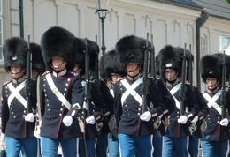 Changing of the guard at the palace during one of our photo stops. Our tour guide knew exactly where we should stand and exactly how we needed to move to various areas to get the best views and..., Gerald H - June 2011