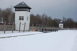 Guards towers., Peter M - February 2009