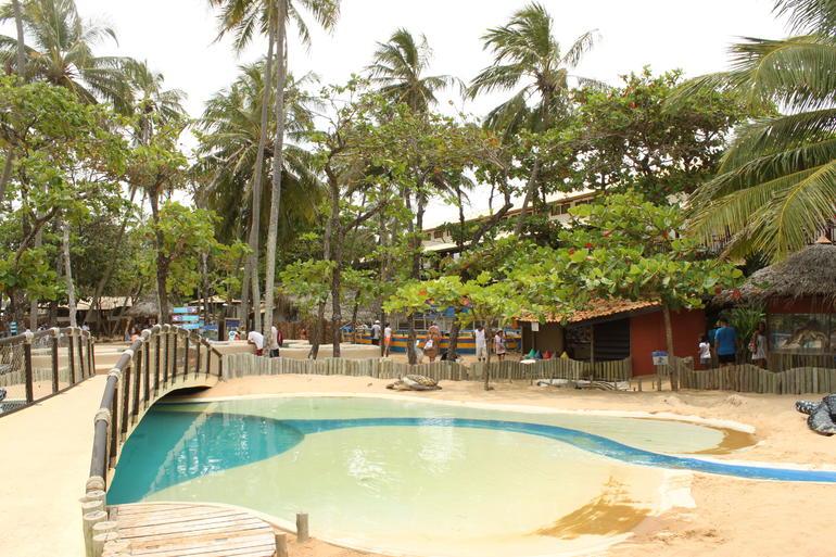 IMG_4487 - Salvador da Bahia