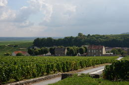 Checking out the champagne vineyards of Epernay, and beyond , Nicholas M - October 2013