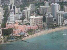 More views of Waikiki, Bandit - February 2011
