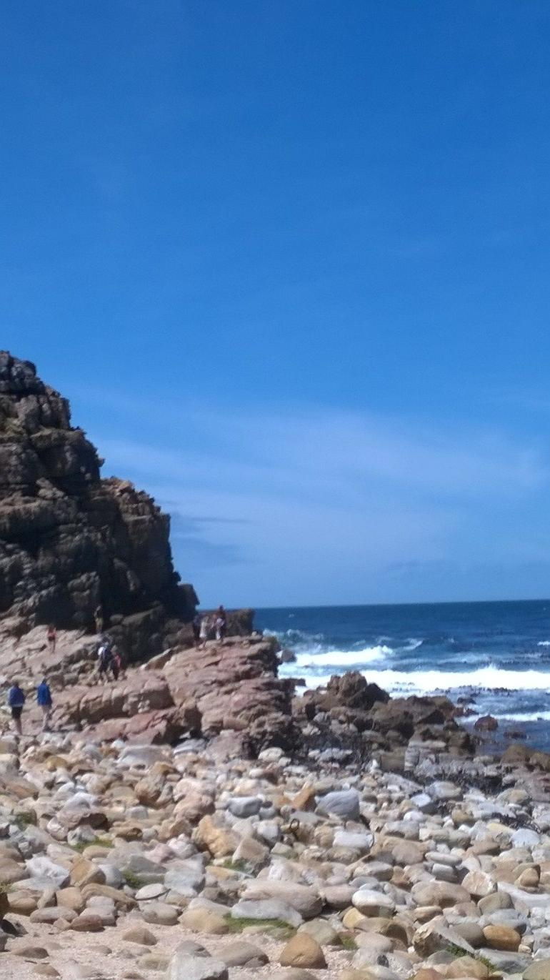 Cape Peninsula Tour from Cape Town photo 26