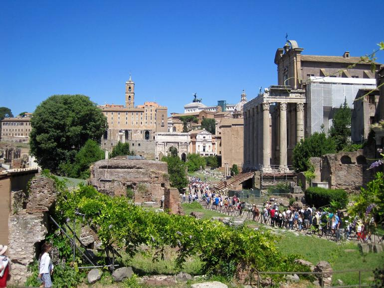 Group or Private Tour of the Colosseum Including Roman Forum and Palatine Hill photo 23