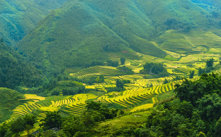 Sapa Trekking Tours - 2 Days 1 Night Stay At Homestay photo 23