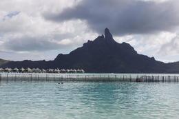 Bora Bora, Stephen H - August 2011