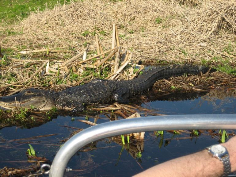 Kennedy Space Center and Everglades Airboat Safari from Orlando