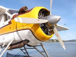 de Havilland Beaver , Doug VK - March 2011