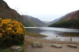 This was the view of the Glendalough Upper Lake - Absolutely beautiful , Brittany F - April 2015