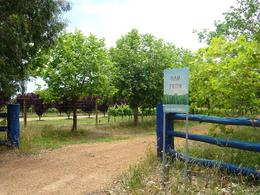 I love the country roads like this in Margaret River , Leah - April 2011