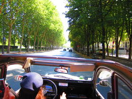 Cruising down a typical tree-lined boulevard of Paris in our Citroen 2CV in the bright summer sunshine, Barrie S - September 2011