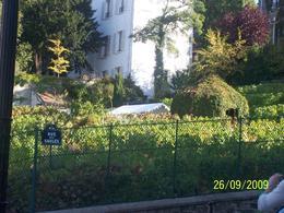 The last remaining vineyard in Paris, Helen K - October 2009