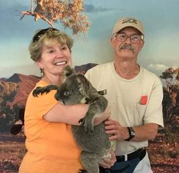 Koala holding at last , wwmelton - October 2016