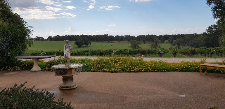 Hunter Valley Wine Tour Including Lunch, Cheese, Chocolate and Distillery Tastings