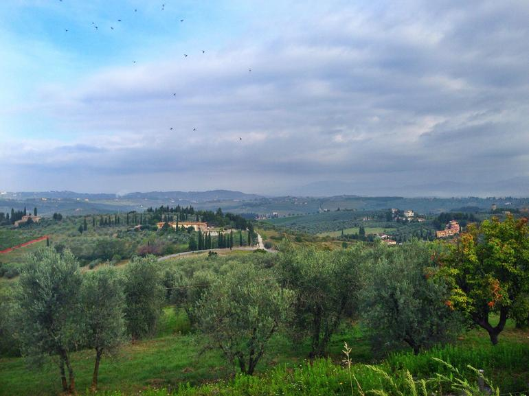 Tuscany Bike or E-Bike Tour from Florence with Tuscan lunch photo 12