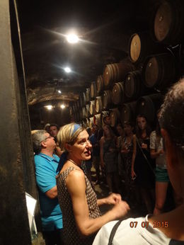 Knowledgeable guide explains different grape cultivation leading to variety of wines , Christine K B - August 2015