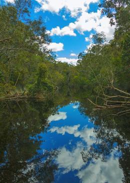 Beautiful reflections. , John G - October 2012