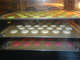 Macarons baking in the oven , Kelly R - October 2016