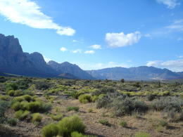 The amazing Red Rock Canyon, World Traveler - July 2011