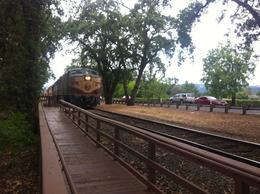 The train pulling in, Kierra - August 2014