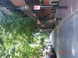 Peaceful streets, Beacon Hill - June 2011