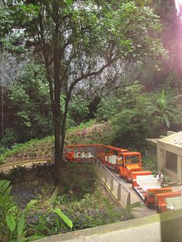 This is a picture from the tram entrance showing the trams used to descend to the cave entrance. - August 2009