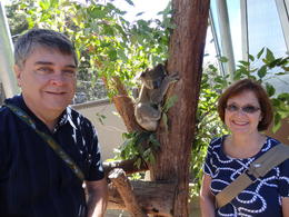 Taronga Zoo, Wild Australia Experience. Spouse and I with Pepper the Koala. Mar. 5, 2013. , Maria L - April 2013