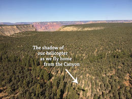 Good-bye to our aerial tour of the Grand Canyon. , Laura K. - November 2016