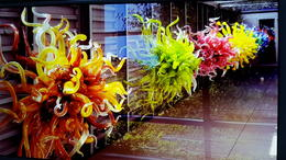 CHIHULY MUSEUM , Patty A - August 2017
