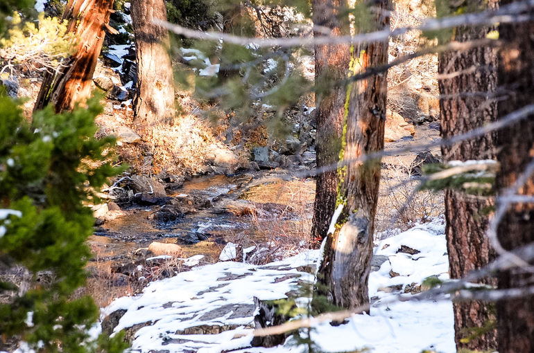 Lake Tahoe Semi-Private Photography Tour photo 7