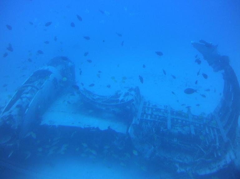 Underwater views - Oahu