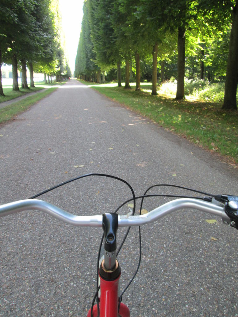 Versaille bike tour from the driver's seat - Paris