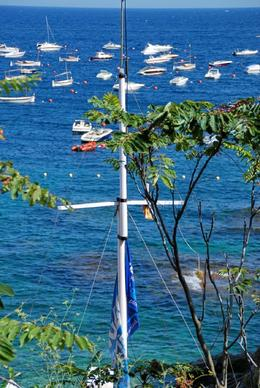 Boats in bay., Stuart R - August 2008