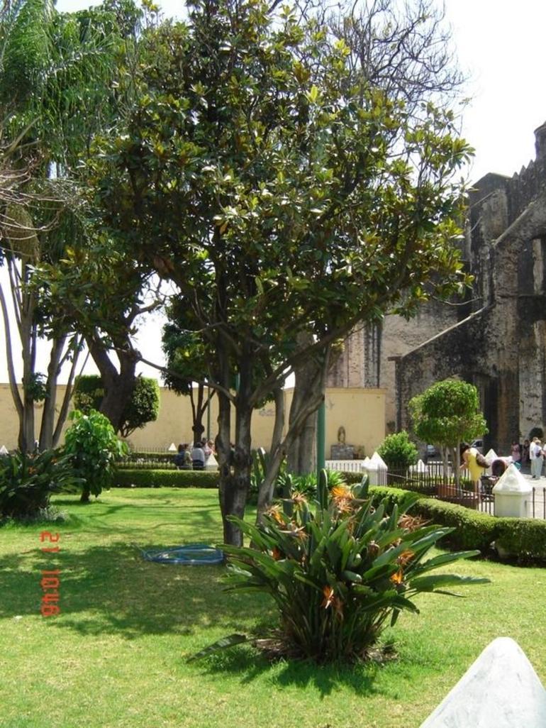 Gardens - Mexico City