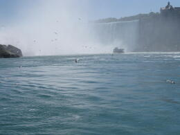 picture taken aboard 'maid of the mist' en-route to the Niagara Horsheshoe Falls , peter.butcher - June 2011