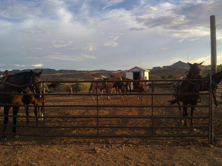 Wild West Sunset Horseback Ride with Dinner - Las Vegas