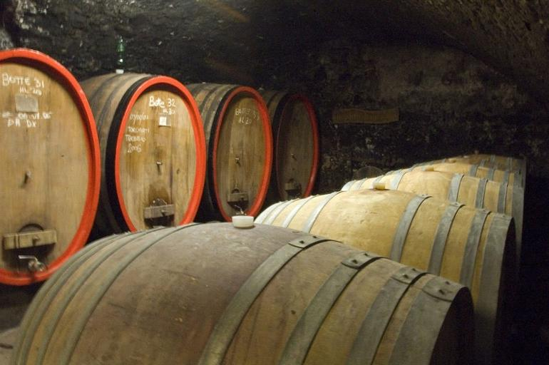 Chianti Wine Tour from Florence - Florence