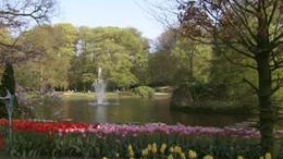 Keukenhof Gardens! - February 2012