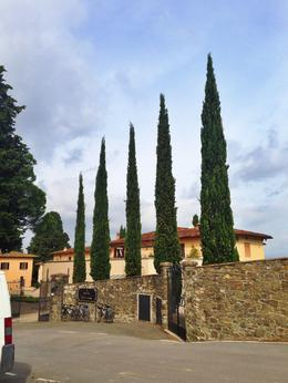 The winery we stopped at on our tour. We learned so much about Chianti wines and the wine making process. The winery was incredible and the tour guides allowed a lot of time for picture taking here. , tanyaewilliams - September 2014