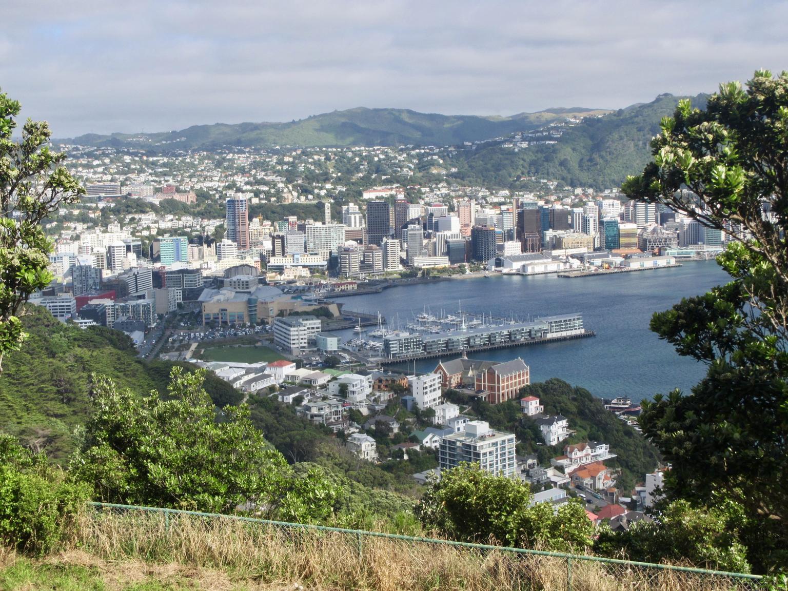 MÁS FOTOS, Wellington Hop-on Hop-Off Bus Tour