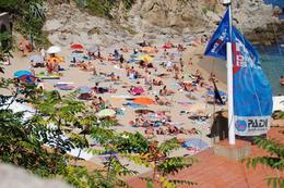 Beach., Stuart R - August 2008