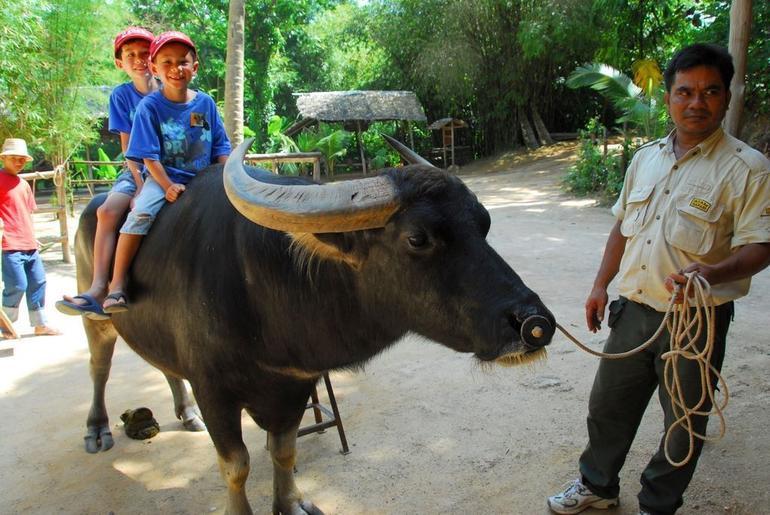 Phuket Elephant Safari - Phuket