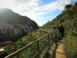 Beautiful view of Manarola , Fiona V - November 2014