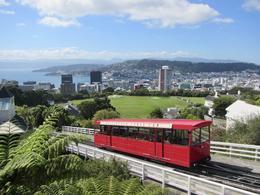 Wellington hop-on-hop-off Tram stop , Amanda B - April 2017