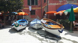 boats in Cinque Terre , Suzanne V - August 2016