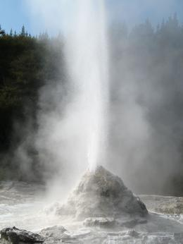 Lady Knox Geyser erupts promptly at 10:15am each day. This isn't a case of nature being punctual, it's a result of someone dropping soap into the opening of the vent. Nonetheless it's a beautiful... - April 2009
